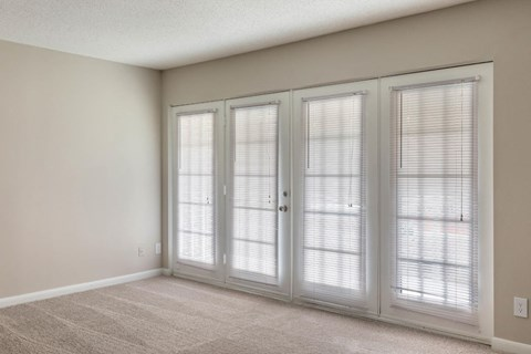 Balcony/Patio Doors with Blinds
